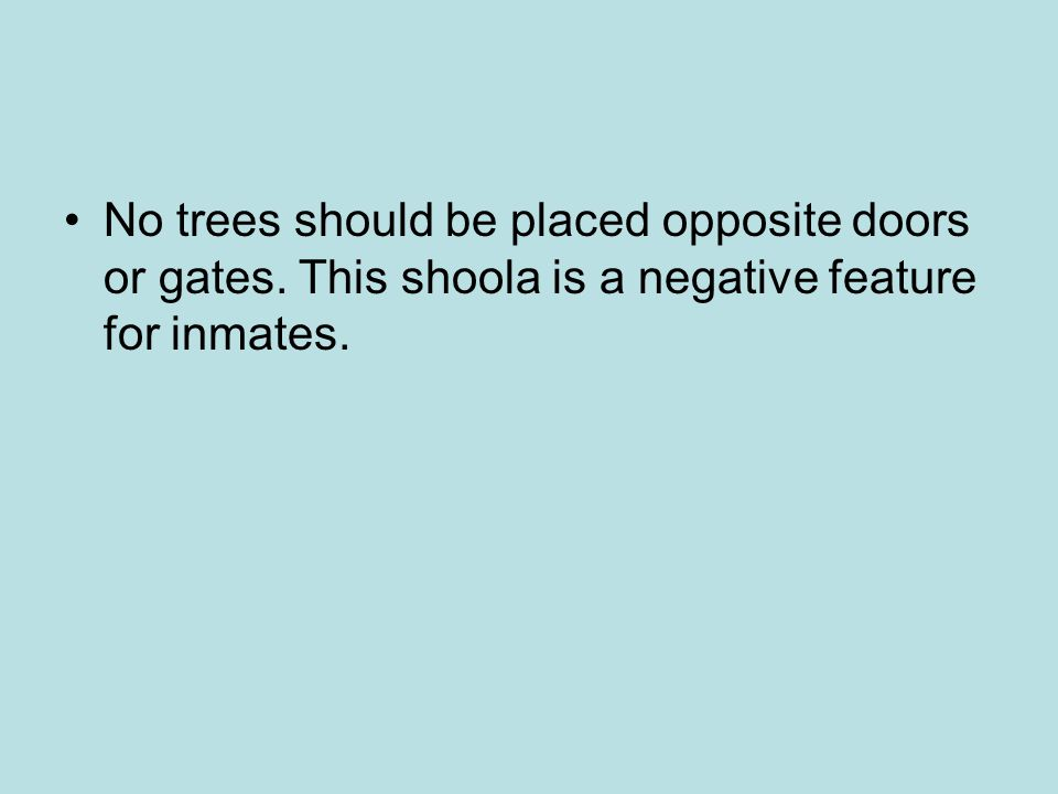 No trees should be placed opposite doors or gates