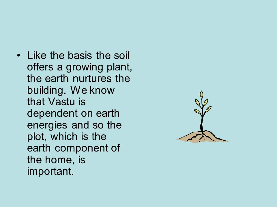 Like the basis the soil offers a growing plant, the earth nurtures the building.