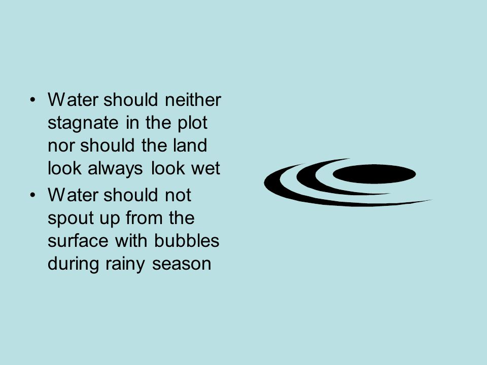Water should neither stagnate in the plot nor should the land look always look wet