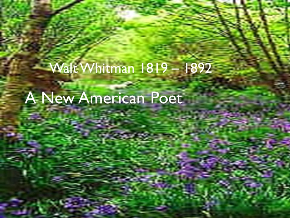 Walt Whitman 1819 – 1892 A New American Poet