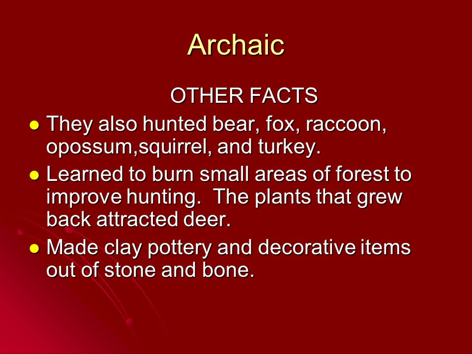 Archaic OTHER FACTS. They also hunted bear, fox, raccoon, opossum,squirrel, and turkey.