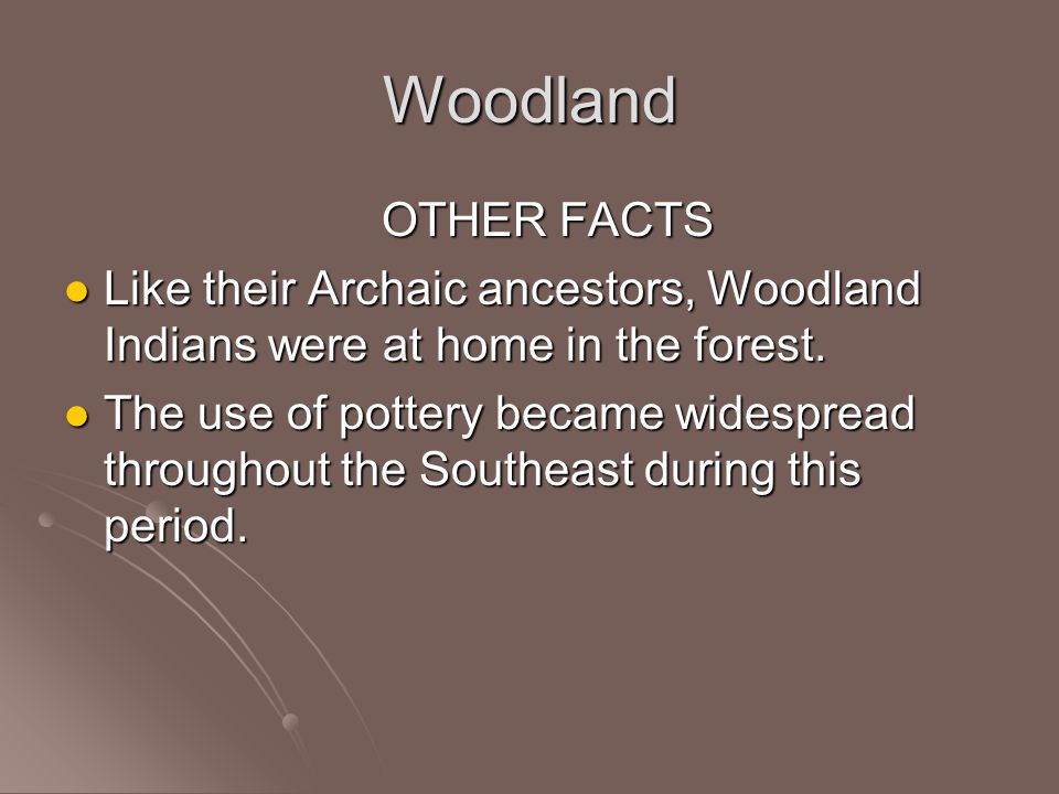 Woodland OTHER FACTS. Like their Archaic ancestors, Woodland Indians were at home in the forest.