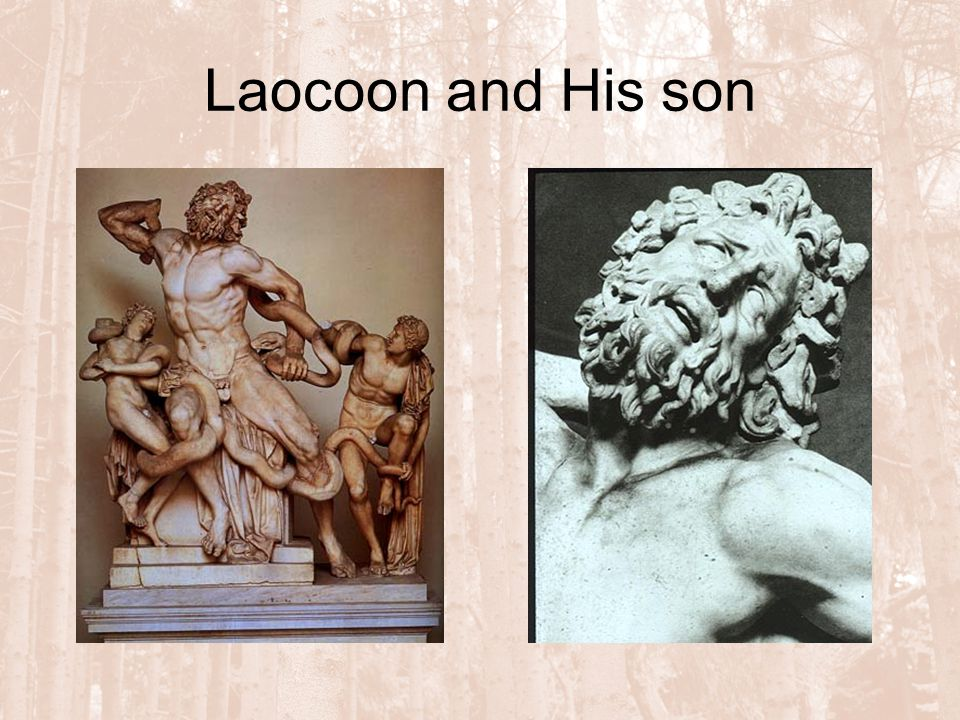 Laocoon and His son