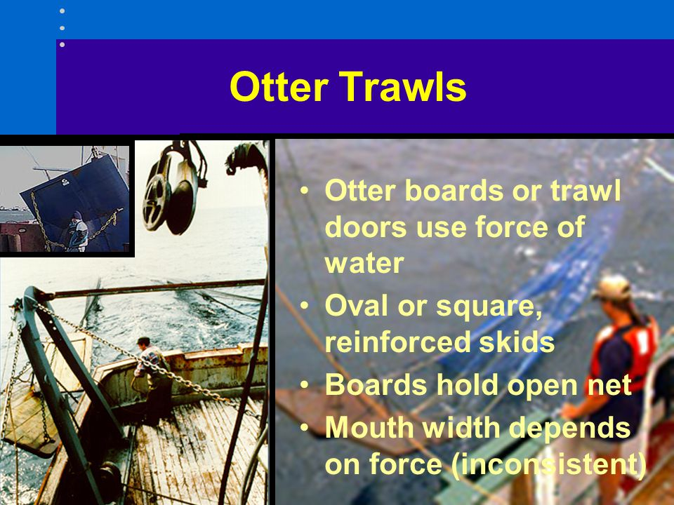 Otter Trawls Otter boards or trawl doors use force of water