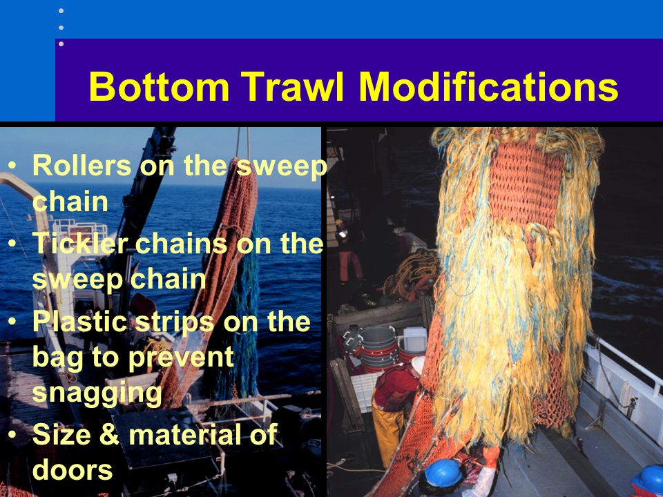 Bottom Trawl Modifications