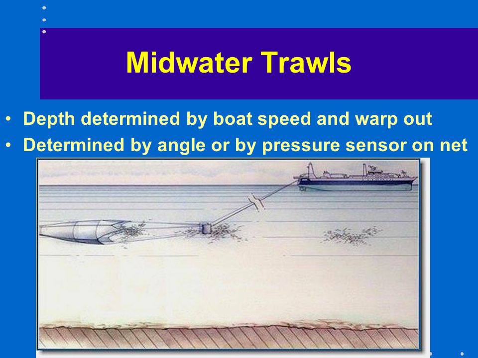 Midwater Trawls Depth determined by boat speed and warp out