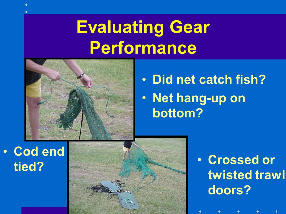 Evaluating Gear Performance