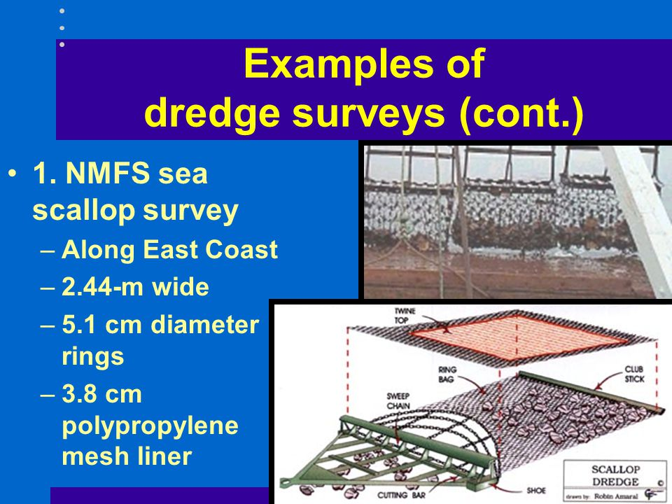 Examples of dredge surveys (cont.)