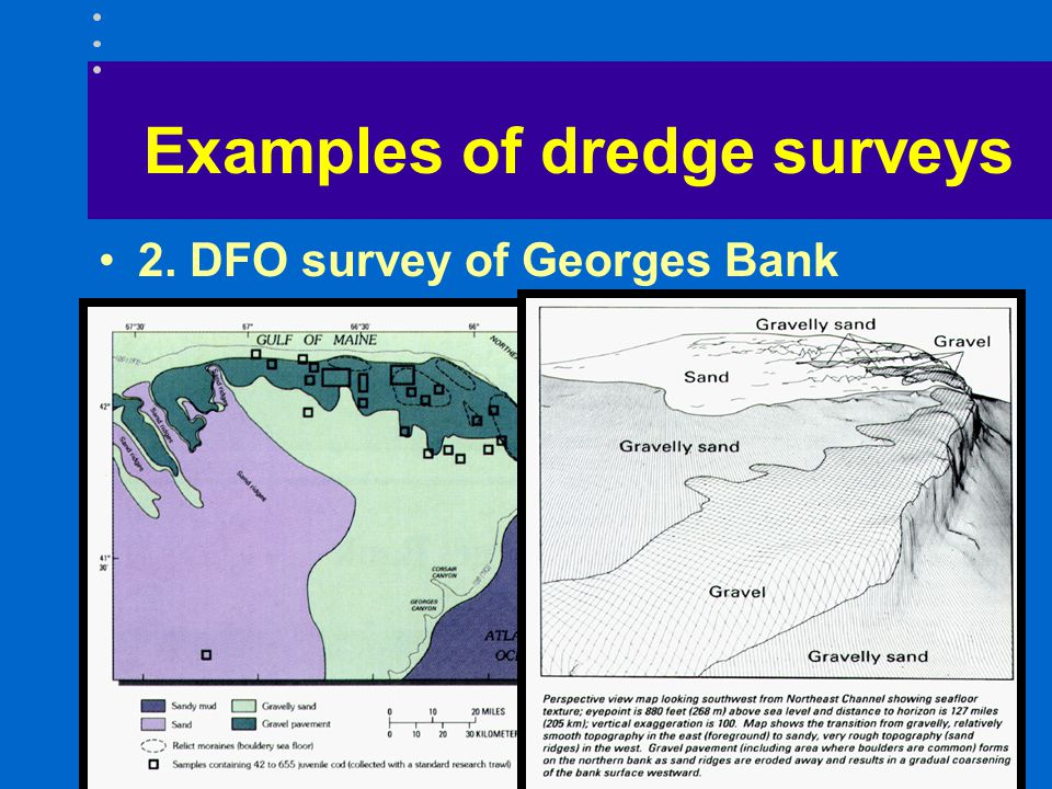 Examples of dredge surveys