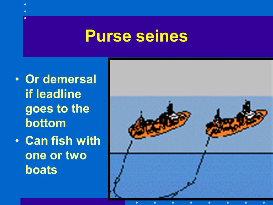 Purse seines Or demersal if leadline goes to the bottom