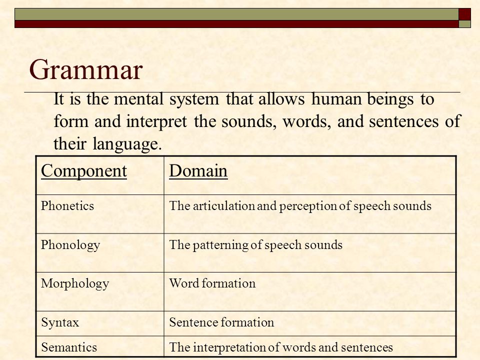 Grammar It is the mental system that allows human beings to form and interpret the sounds, words, and sentences of their language.