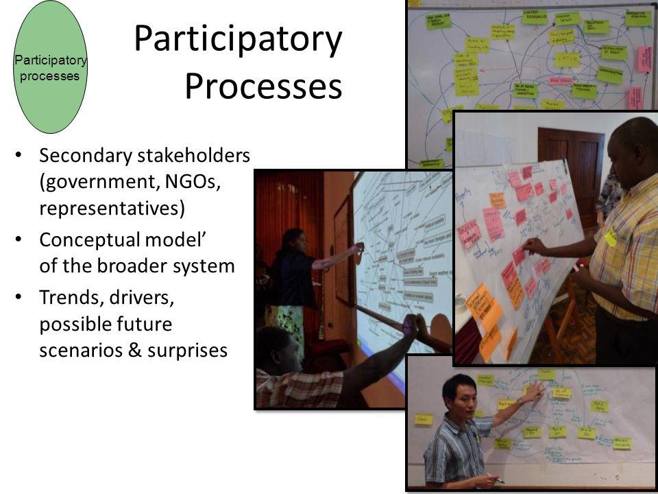 Participatory Processes
