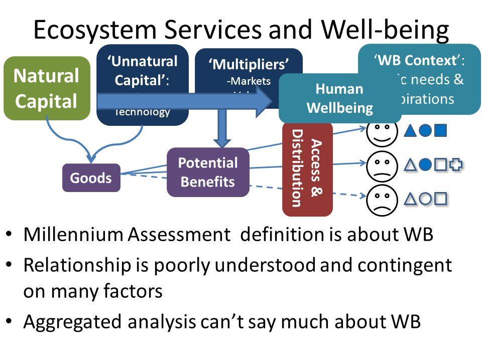 Ecosystem Services and Well-being