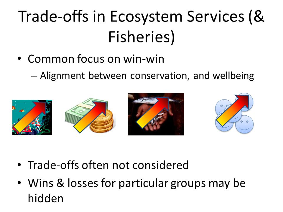 Trade-offs in Ecosystem Services (& Fisheries)