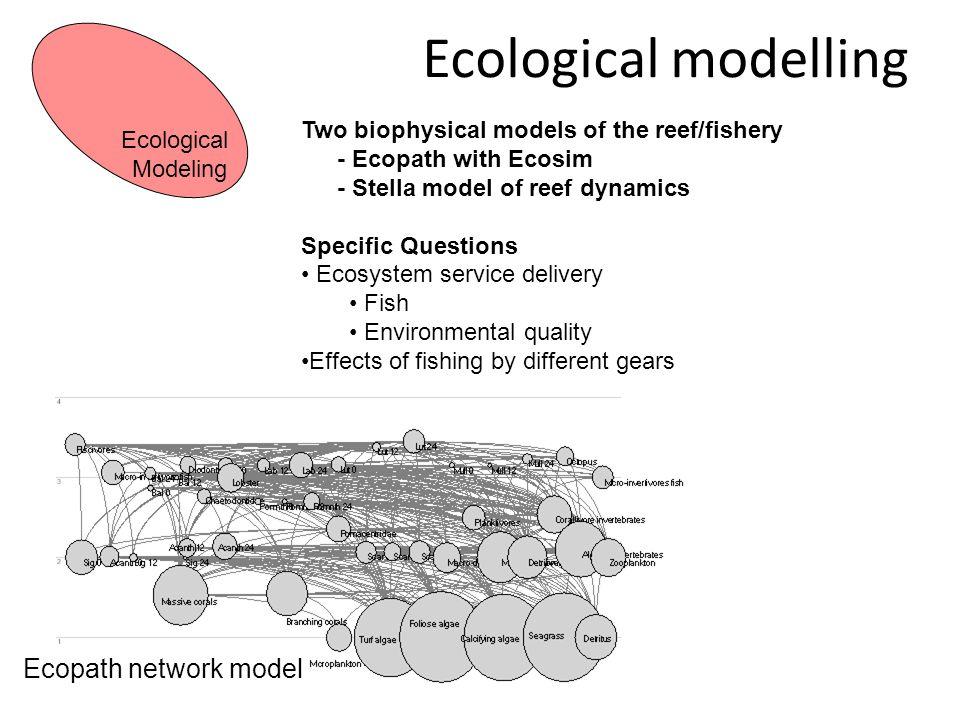 Ecological modelling Ecopath network model