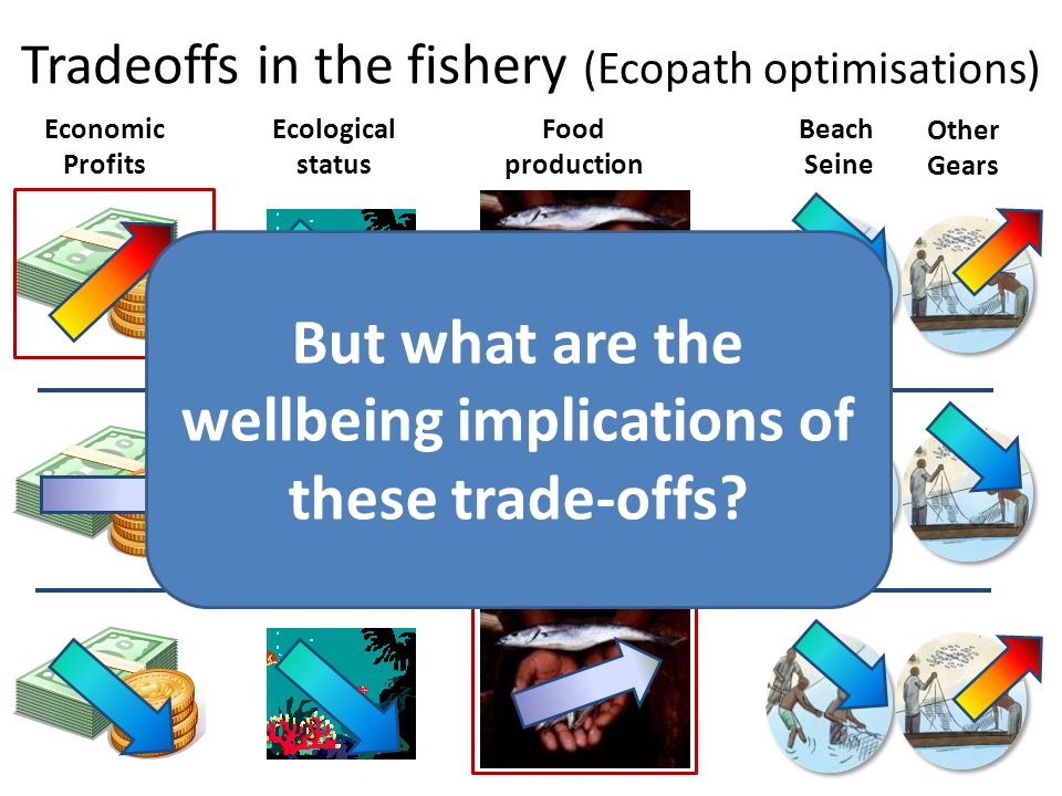 Tradeoffs in the fishery (Ecopath optimisations)