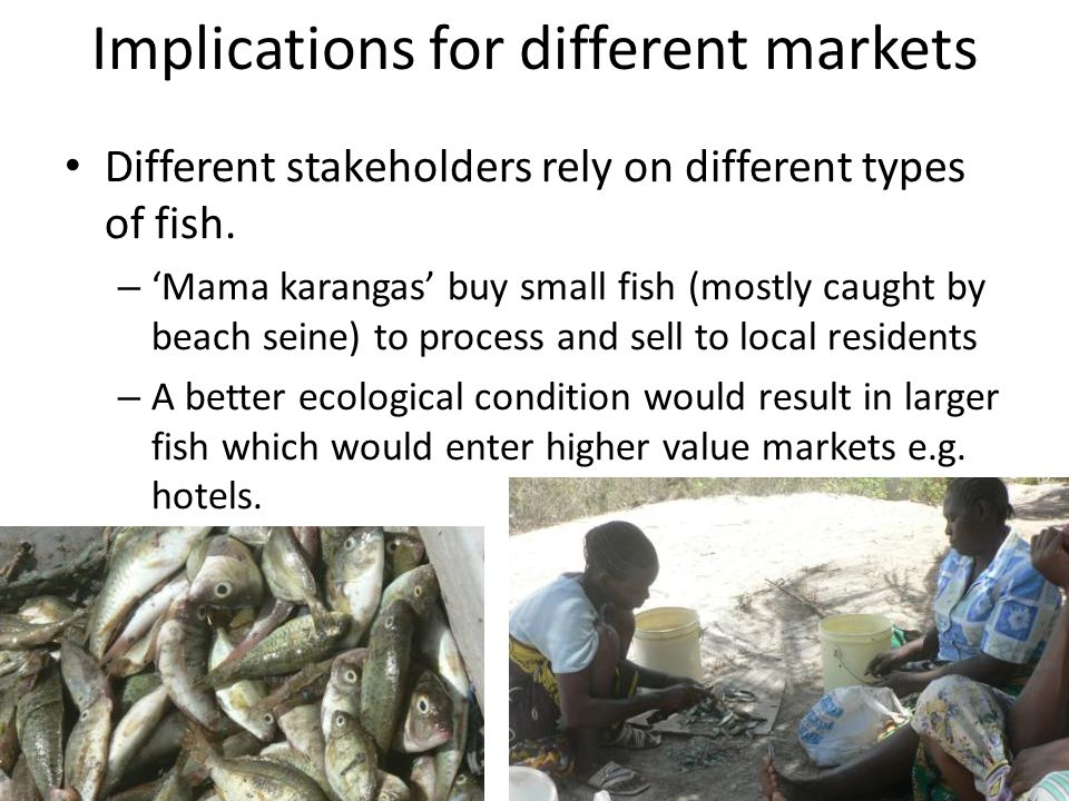 Implications for different markets