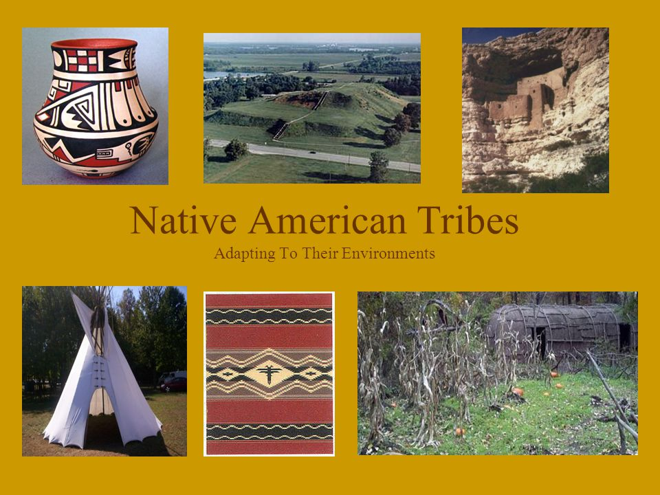 Native American Tribes Adapting To Their Environments