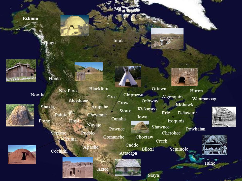 Eskimo Inuit. Tlingit. Haida. Blackfoot. Ottawa. Nez Perce. Huron. Nootka. Chippewa. Cree.