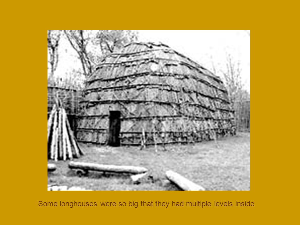 Some longhouses were so big that they had multiple levels inside