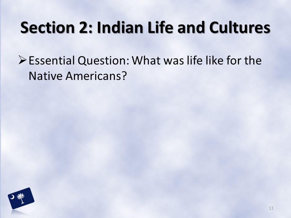 Section 2: Indian Life and Cultures
