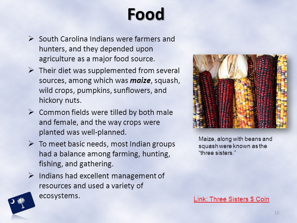 Food South Carolina Indians were farmers and hunters, and they depended upon agriculture as a major food source.