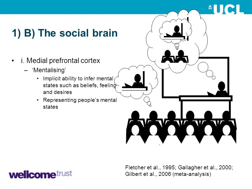 1) B) The social brain i. Medial prefrontal cortex 'Mentalising' mPFC