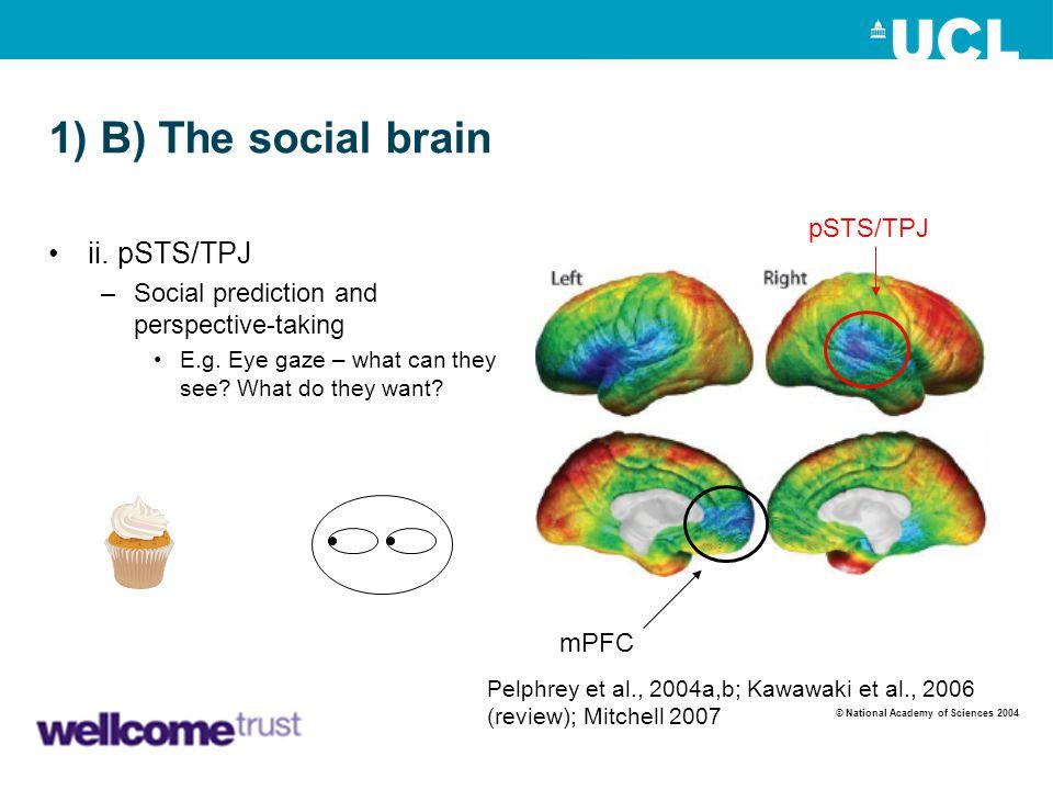1) B) The social brain ii. pSTS/TPJ pSTS/TPJ