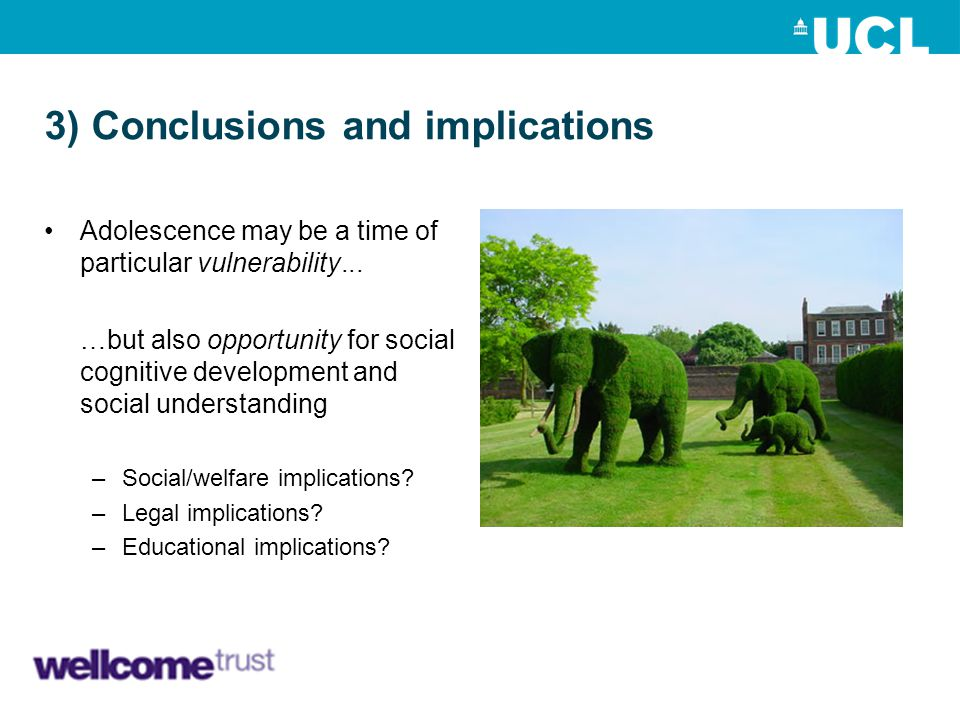 3) Conclusions and implications