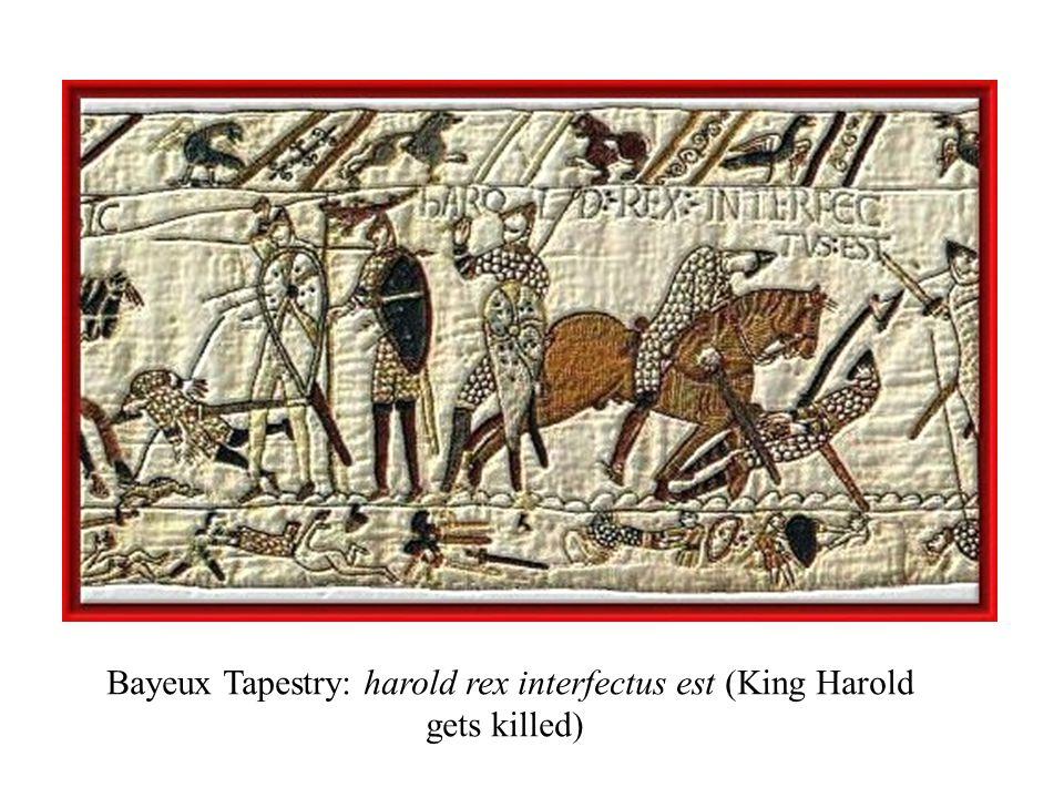 Bayeux Tapestry: harold rex interfectus est (King Harold