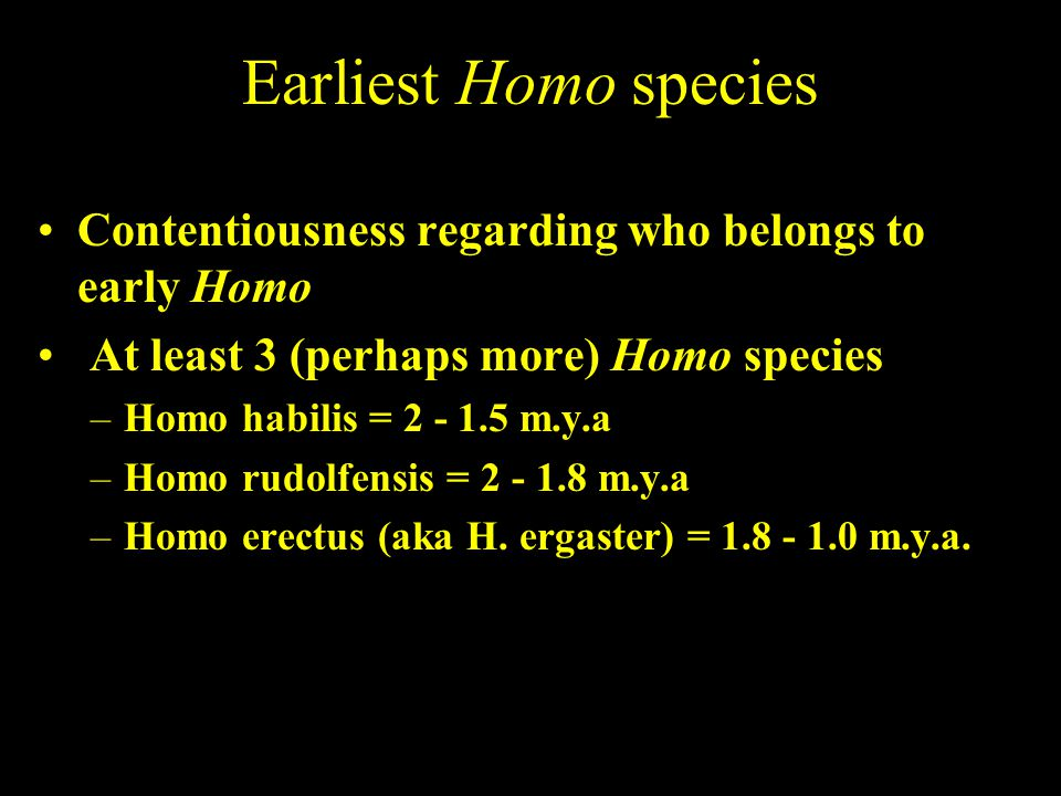 Earliest Homo species Contentiousness regarding who belongs to early Homo. At least 3 (perhaps more) Homo species.