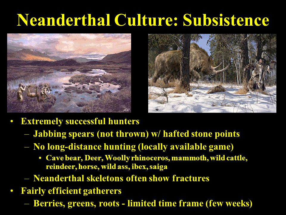 Neanderthal Culture: Subsistence