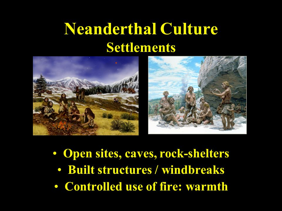 Neanderthal Culture Settlements