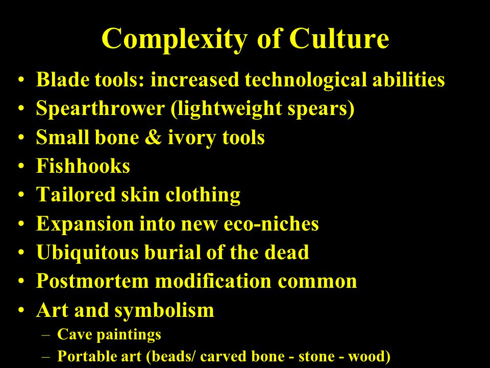 Complexity of Culture Blade tools: increased technological abilities