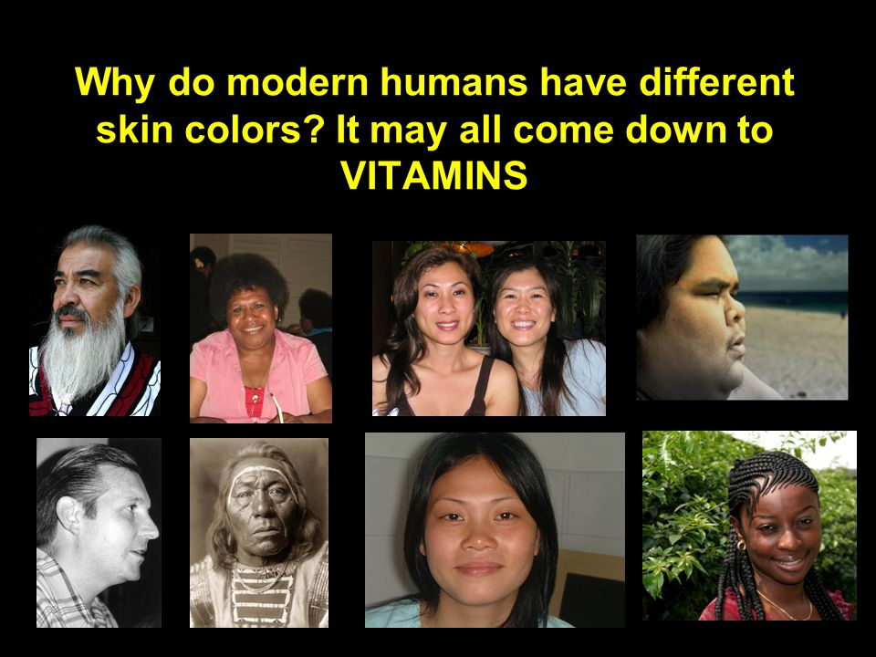 Why do modern humans have different skin colors