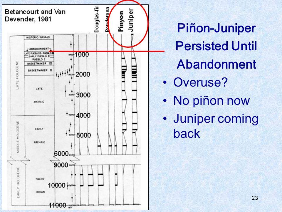 Piñon-Juniper Persisted Until Abandonment Overuse No piñon now Juniper coming back