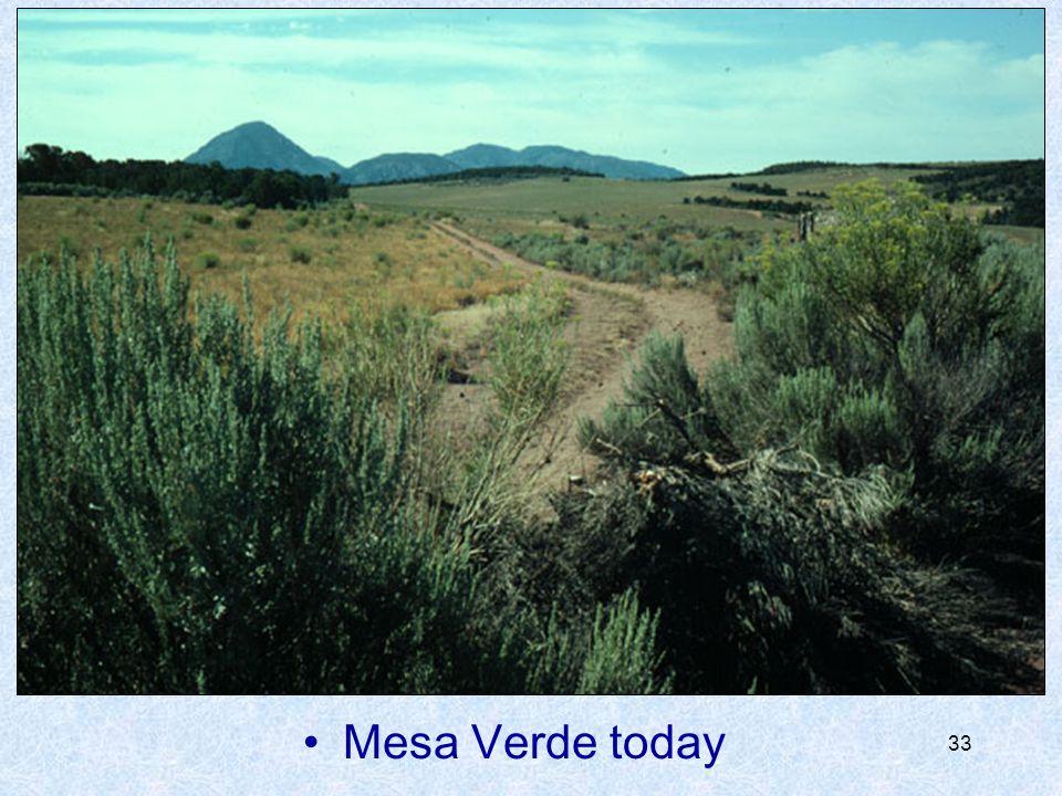 Mesa Verde today