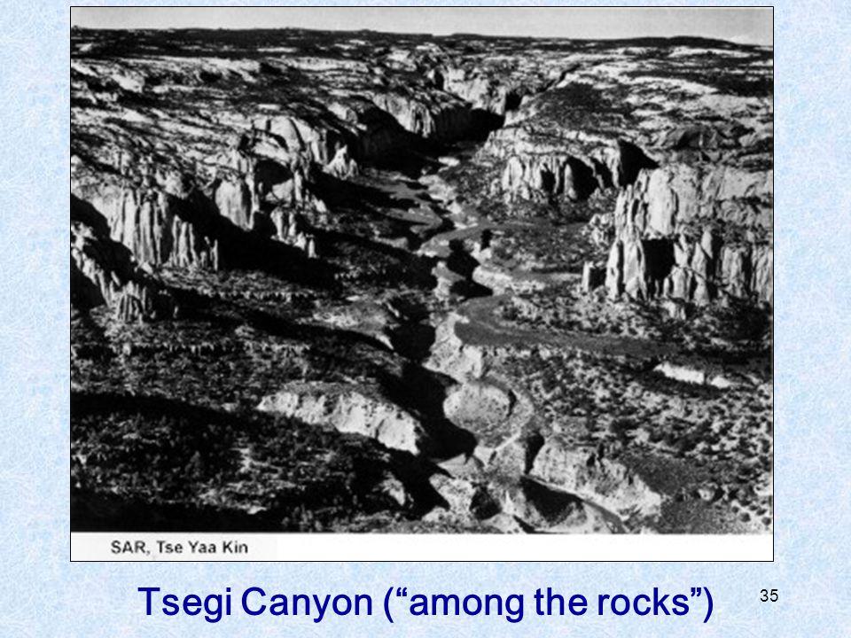 Tsegi Canyon ( among the rocks )