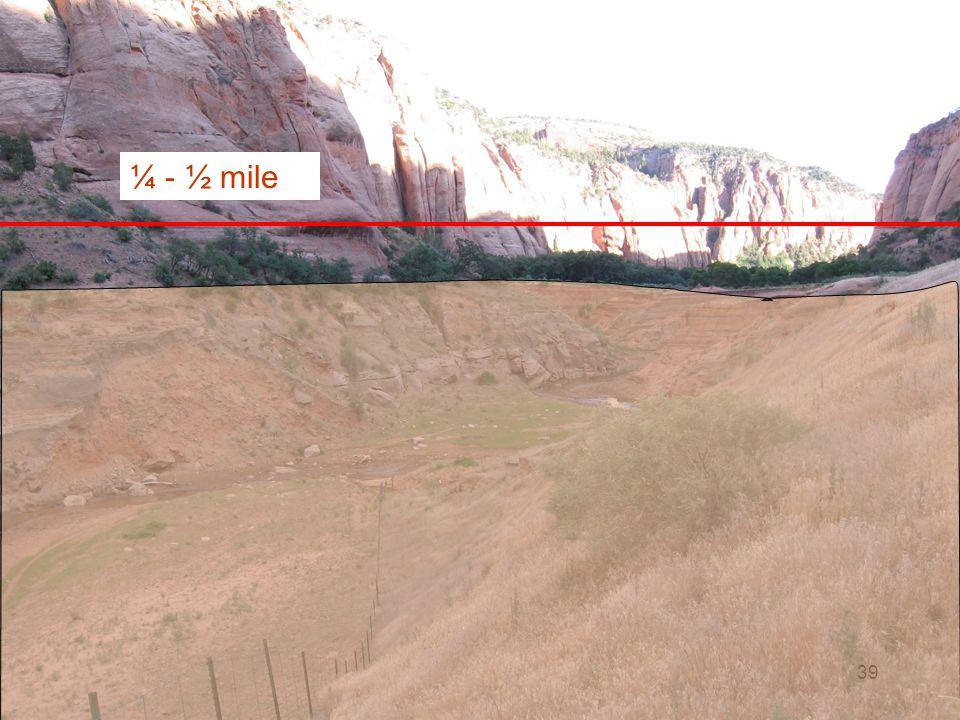 ¼ - ½ mile
