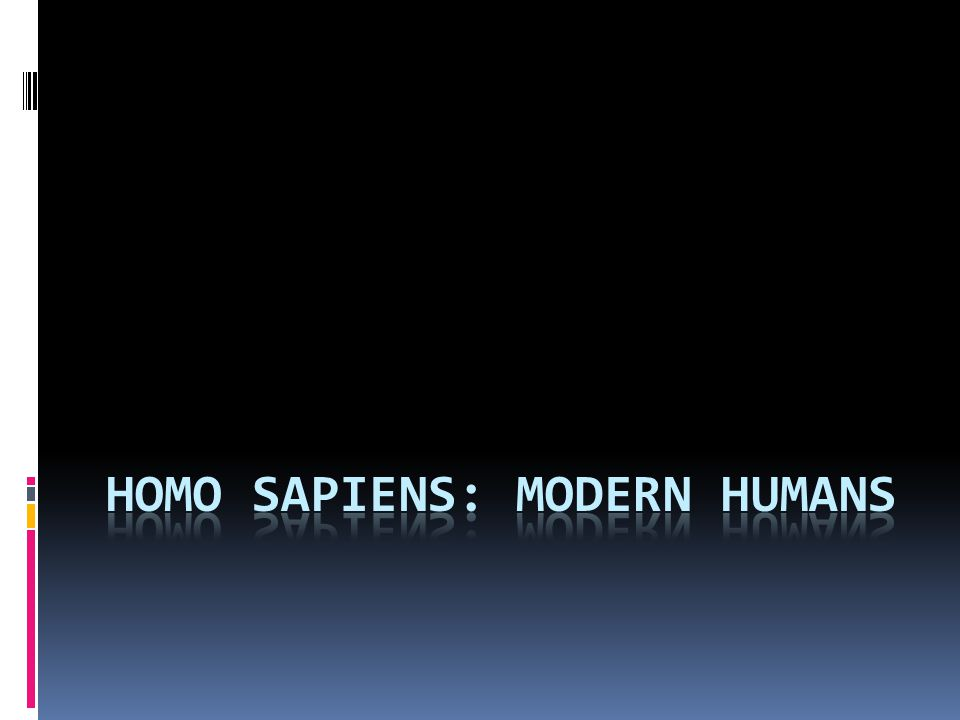 Homo Sapiens: Modern humans