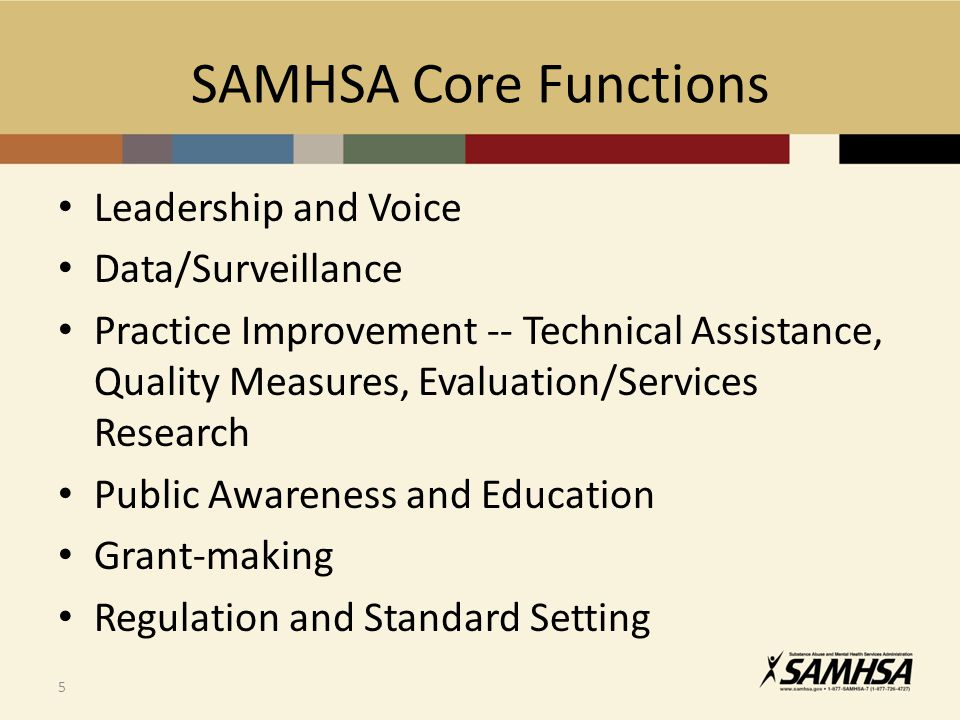SAMHSA Core Functions Leadership and Voice Data/Surveillance