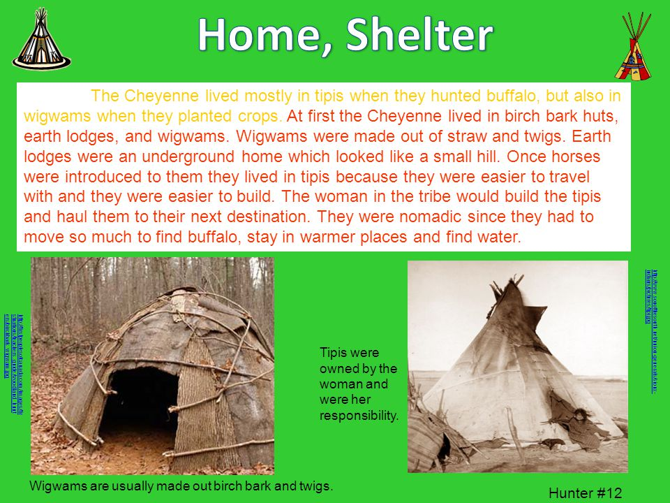 Home, Shelter