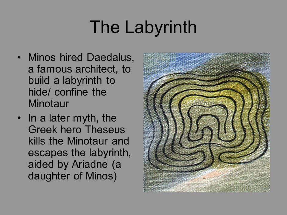 The Labyrinth Minos hired Daedalus, a famous architect, to build a labyrinth to hide/ confine the Minotaur.