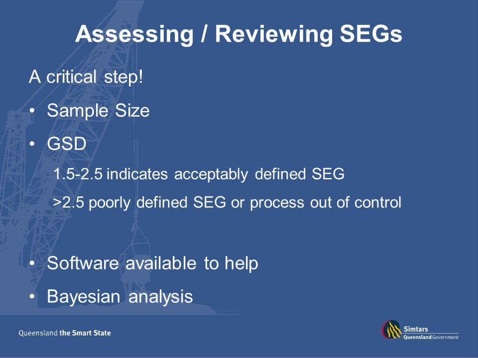 Assessing / Reviewing SEGs