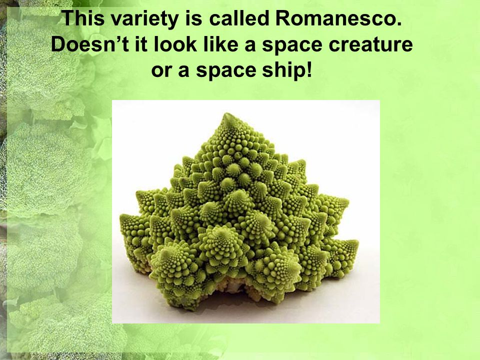 This variety is called Romanesco