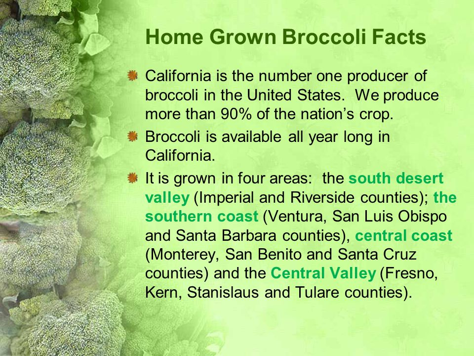 Home Grown Broccoli Facts
