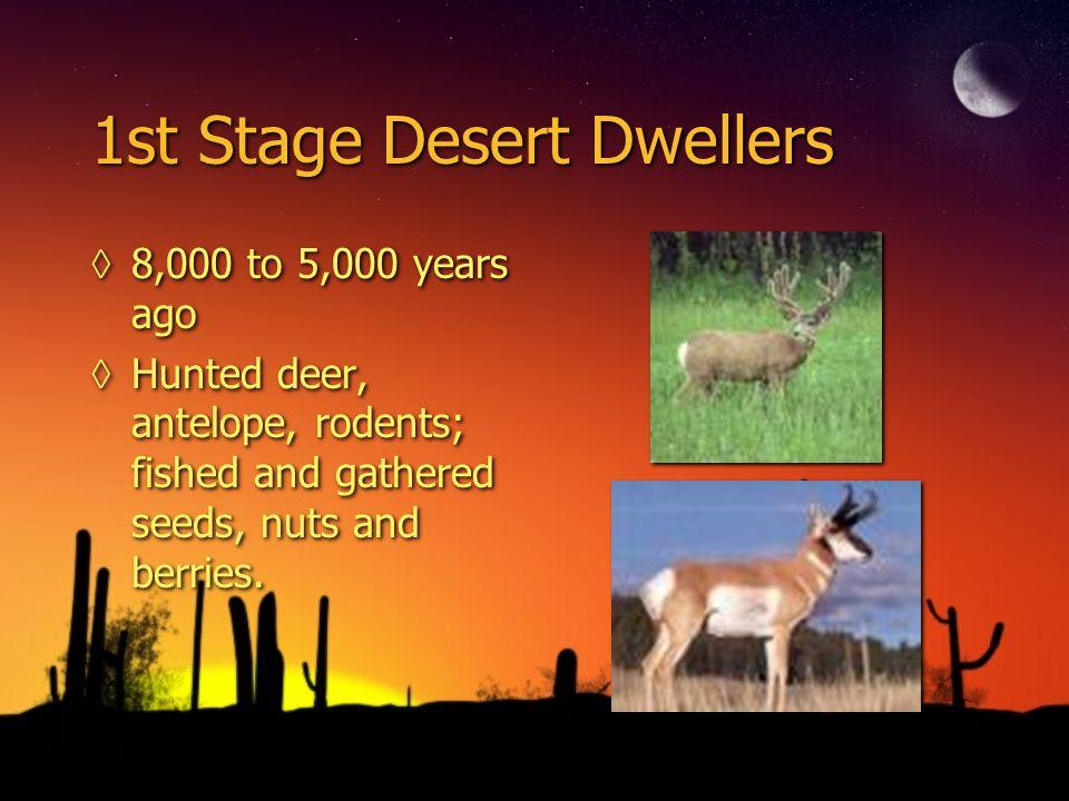 1st Stage Desert Dwellers