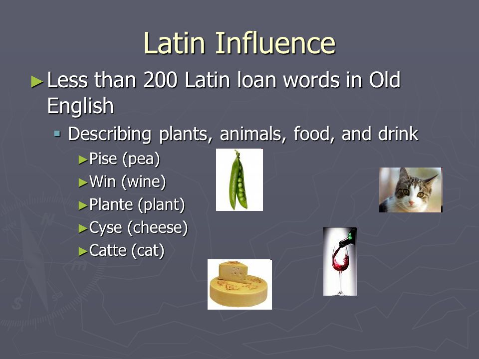 Latin Influence Less than 200 Latin loan words in Old English