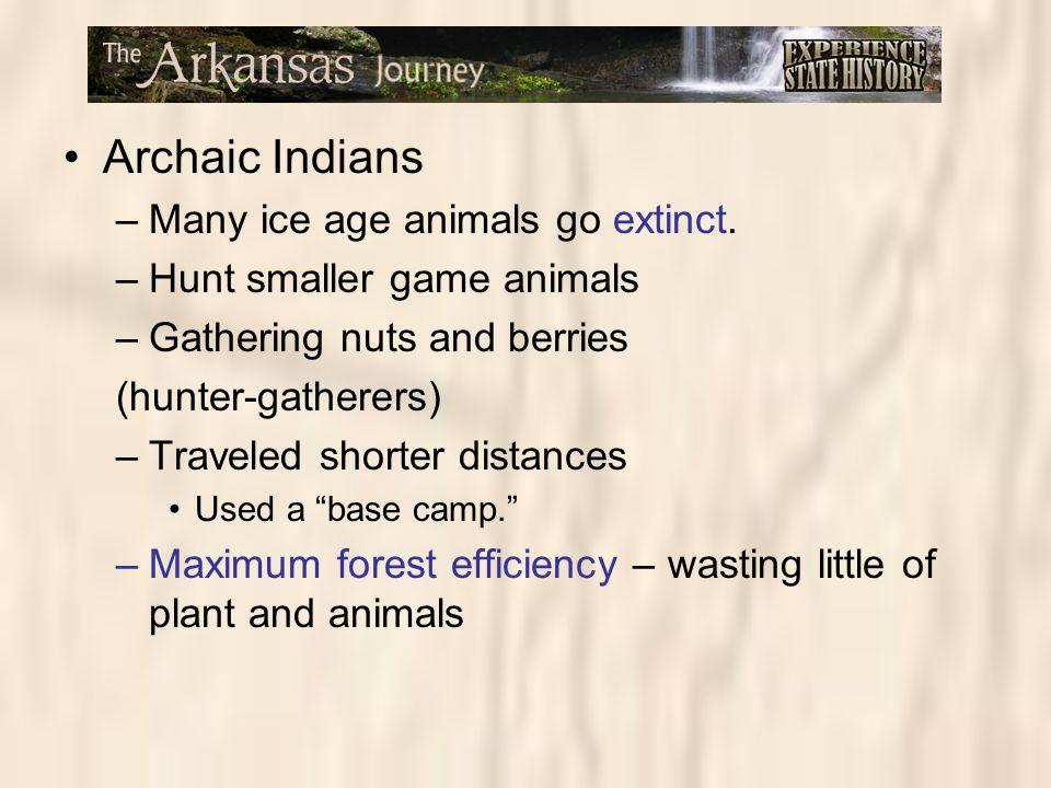Archaic Indians Many ice age animals go extinct.