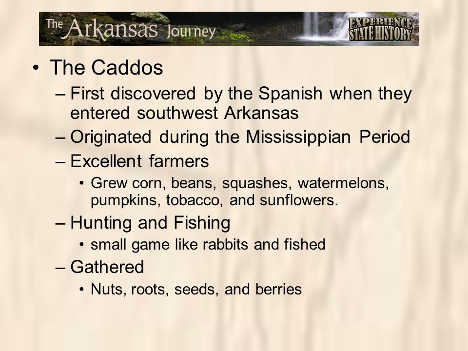 The Caddos First discovered by the Spanish when they entered southwest Arkansas. Originated during the Mississippian Period.